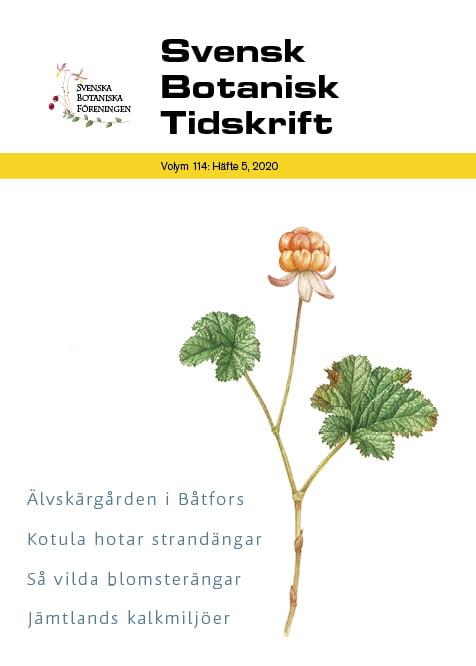 Förstasida SBT 114:5(2020). Illustration: Johanna Emgård