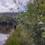 Floraväktarläger i Värmland 2021